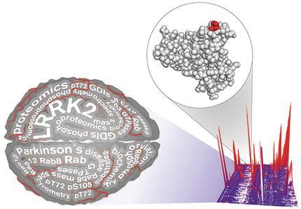 Steger, Krause © Max Planck Institute of Biochemistry